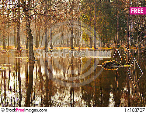 Free Spring Park Royalty Free Stock Photography - 14183707