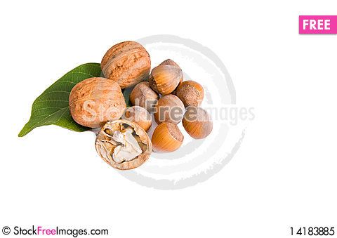 Free Ripe Nuts On A White. Royalty Free Stock Photo - 14183885