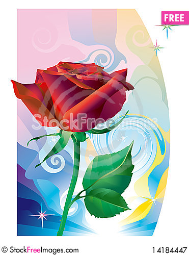 Free Red_rose_flower Royalty Free Stock Photography - 14184447