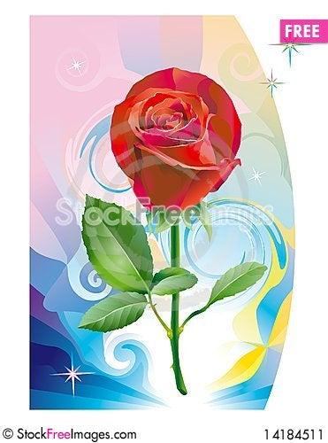 Free Fantasy_rose_flower Stock Image - 14184511