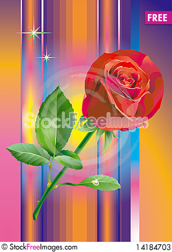 Free Red_rose_flower Stock Photos - 14184703