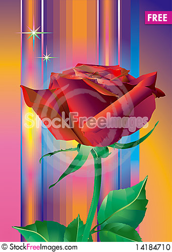 Free Red_rose_flower Stock Photo - 14184710