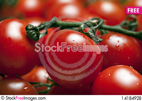 Free Cherry Tomatoes On Branch Royalty Free Stock Photos - 14184928