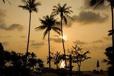 Free Sunset Royalty Free Stock Image - 14181006
