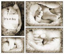 Free Babies Stock Photo - 14181280