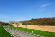 Free Picturesque View Of Empty Countryside Road Stock Image - 14181951