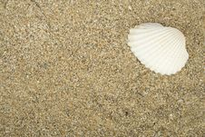 Free Sea Sand Royalty Free Stock Images - 14184429