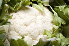 Free Cauliflower Stock Image - 14184701