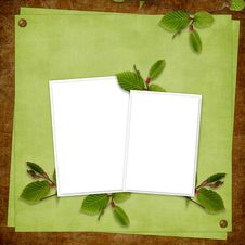 Card For The Holiday  With Plant Royalty Free Stock Photo