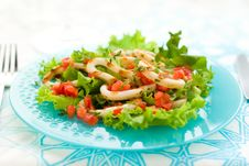 Grilled Calamari Stock Image