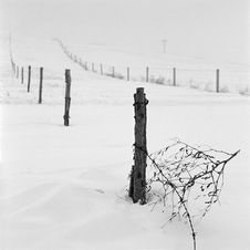 Free Broken Fence Stock Photo - 14188530