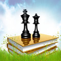 Free Golden Book About Strategy Royalty Free Stock Photo - 14195765
