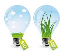 Free Realistic Eco Bulbs - Set 2 Royalty Free Stock Image - 14190986
