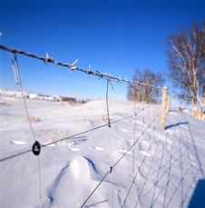 Free Ice Fence Royalty Free Stock Image - 14192336