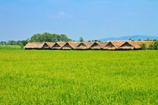 Free Hut And The Field Stock Photography - 14192672