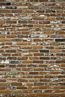Free Old Paint Chipped Brick Wall Royalty Free Stock Photos - 14193848