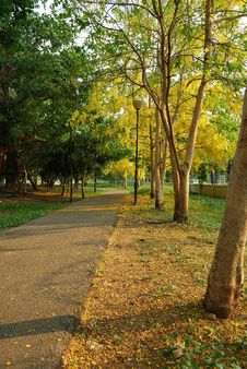 Pathway In The Park Royalty Free Stock Photo