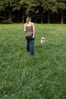 Free Dog Training Stock Image - 14195831