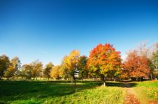Free Autumn Landscape Royalty Free Stock Photography - 14197727
