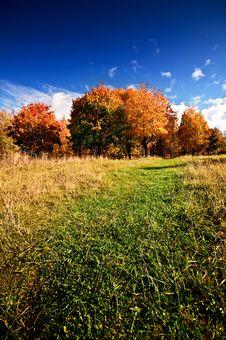 Free Autumn Landscape Royalty Free Stock Image - 14197896