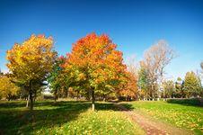 Free Autumn Landscape Royalty Free Stock Photos - 14198118