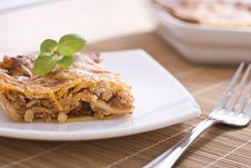 Free Lasagna Stock Photos - 14199243
