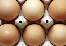 Free Six Eggs Royalty Free Stock Photos - 1420448