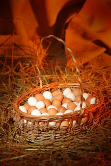 Free Eggs In A Basket Royalty Free Stock Image - 1423346