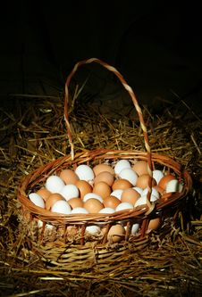 Free Eggs In A Basket Royalty Free Stock Images - 1423349