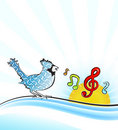 Free Singing Bird Stock Images - 14203374