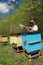 Free Beekeeper Stock Photography - 14208042