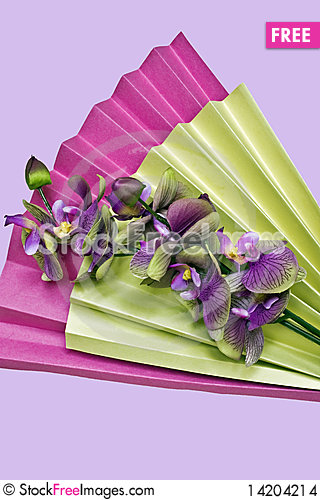 paper fan and flowers Stock Photo