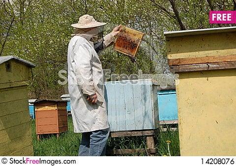 Beekeeper Stock Photo