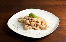 Free Spanish Beans Royalty Free Stock Image - 14201976