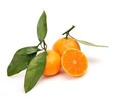 Free Fresh Fruit Stock Images - 14202764