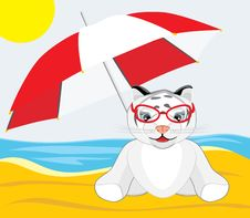 Free Little Tiger With Umbrella On The Beach Stock Images - 14203904