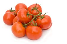 Free Tomatoes Royalty Free Stock Photo - 14203955