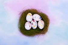 Free Bird S Nest With Easter Eggs Stock Photo - 14205170