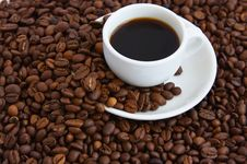 Free Cup Of Coffee Stock Photo - 14206110