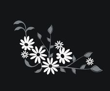 Free Floral Elements Royalty Free Stock Images - 14206799