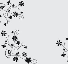 Free Floral Elements Royalty Free Stock Photos - 14206838