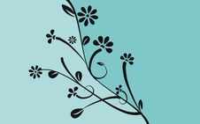 Free Floral Elements Royalty Free Stock Images - 14206949