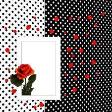 Free Congratulation Card With Rose Polka Dot Background Royalty Free Stock Image - 14207256