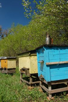 Apiary In Springtime Stock Images