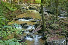 Free Golden Cascades Royalty Free Stock Photo - 14208815