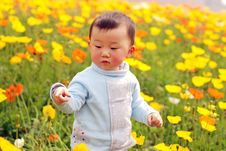 Free Cute Baby Stock Photos - 14209093
