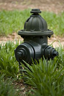 Free Green Fire Hydrant Stock Image - 14209241