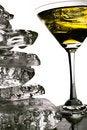 Free Martini Glass Stock Photo - 14212220