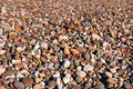 Free Beach Pebbles. Stock Image - 14213881