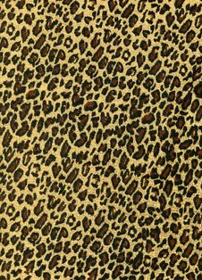 Free Leopard Texture Stock Image - 14212971